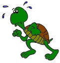 turtletrot